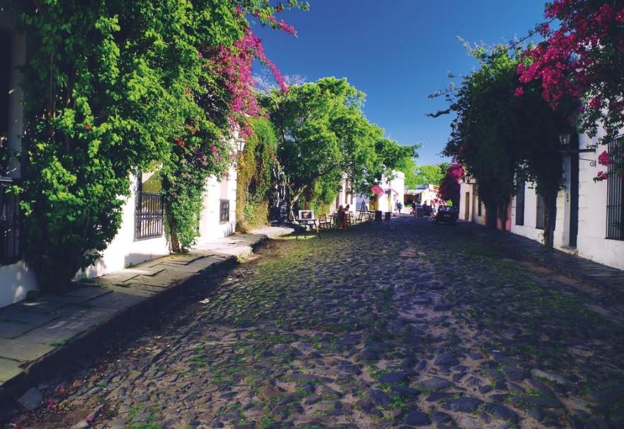 Čtyři perly Jižní Ameriky-Patagonie,Buenos Aires,Iguazú,Rio (fotografie 12)