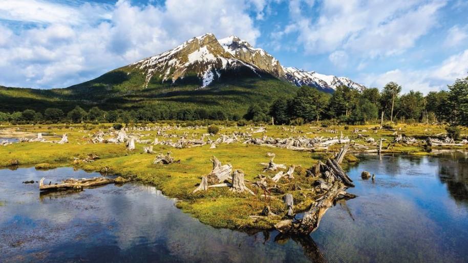 Čtyři perly Jižní Ameriky-Patagonie,Buenos Aires,Iguazú,Rio (fotografie 25)