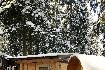 Apartmány Camping Villagge Boscoblú (fotografie 3)