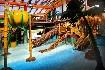 Aquapark Tatralandia - Holiday Village (fotografie 5)