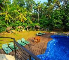 Hotel Jungle Village