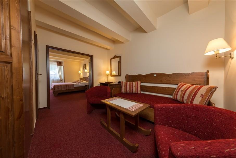 Hotel Ski & Wellness Residence Družba (fotografie 18)