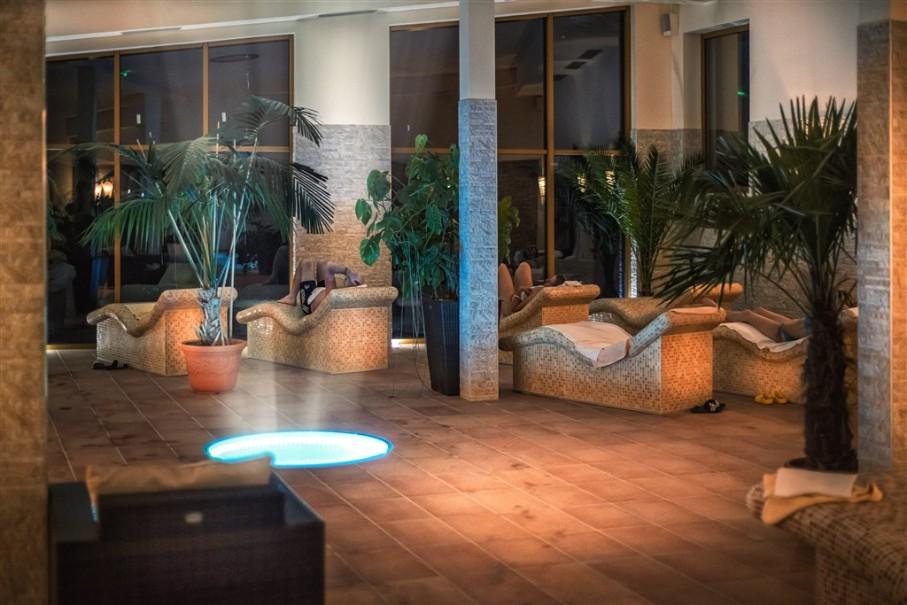 Hotel Ski & Wellness Residence Družba (fotografie 27)