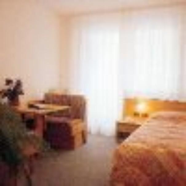 Hotel Dolomiti (fotografie 12)