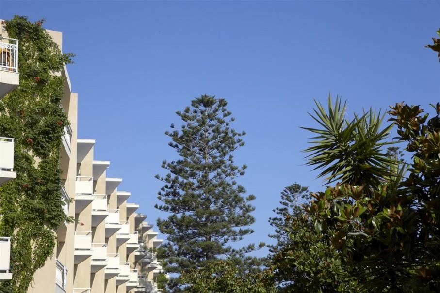 Hotel Sunshine Rhodos (fotografie 5)