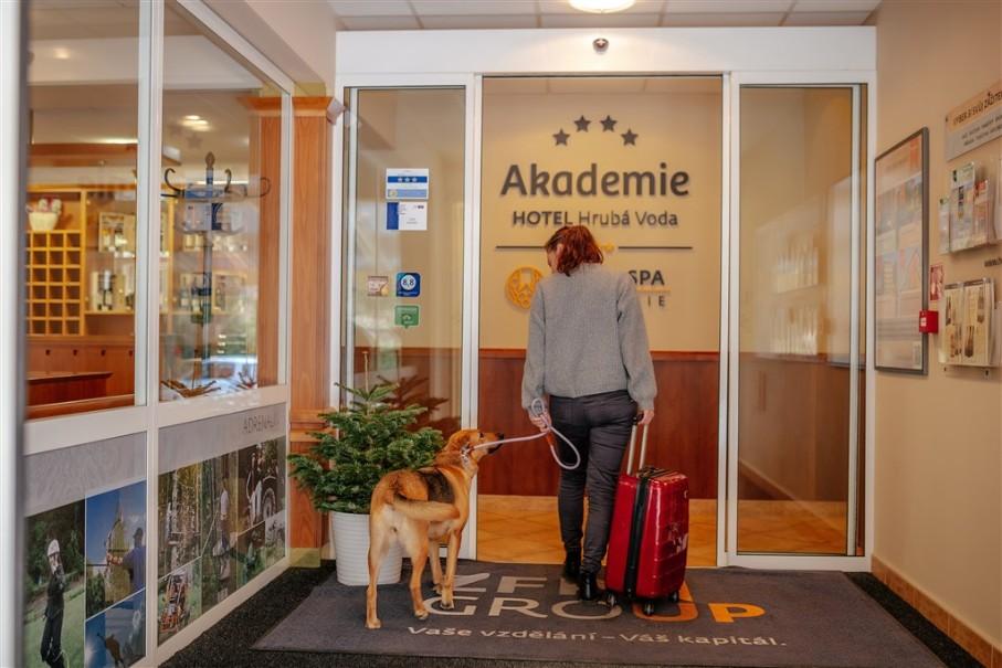 Hotel Akademie (fotografie 9)
