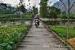 Vietnam na motorkách pro každého (fotografie 8)