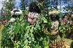 Papua Nová Guinea – Jedinečný festival barev Goroka (fotografie 2)