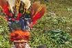 Papua Nová Guinea – Jedinečný festival barev Goroka (fotografie 15)