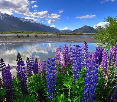 Nový Zéland - přírodní krásy země Maorů