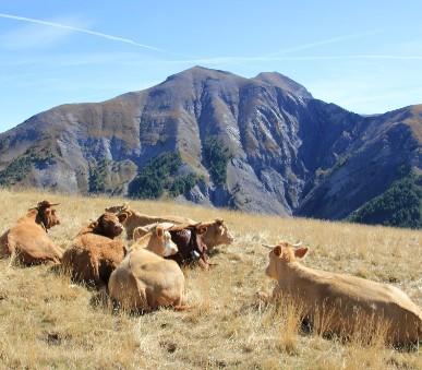 K vrcholům čtyřtisícovek a Vaduz