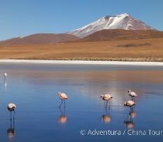 Treking pod Huascaránem a bolivijské Altiplano