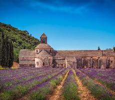 Provence s vůní levandule
