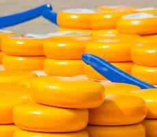 To nejlepší z Amsterdamu + sýrové trhy v Alkmaaru
