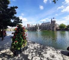 Rotterdam, Van Gogh a největší korzo světa