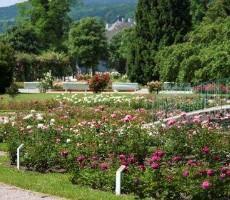Zámek Laxenburg a slavnosti růží v Badenu
