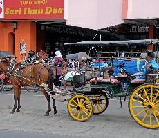 Seznámení s Jávou a Bali