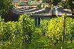 Rekreační dům Milovice (CZ6914.100.1) (fotografie 4)