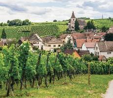 Za vínem a krásami Burgundska a kraje Beaujolais