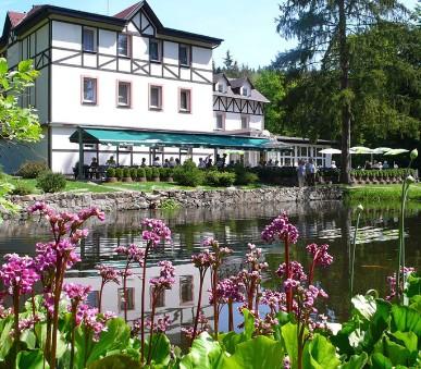 Spa & Wellness Hotel Harmonie (hlavní fotografie)