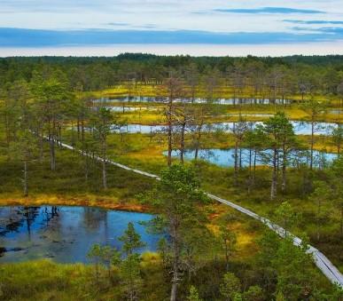 Helsinky, hlavní města pobaltí a národní park Lahemaa