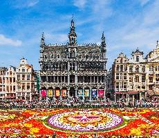 Belgické království s květinovým kobercem v Bruselu