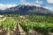 Jihoafrická republika - krásy jižní Afriky (fotografie 3)